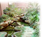 Beautiful tropical gardens with soothing waterfall and fishpond